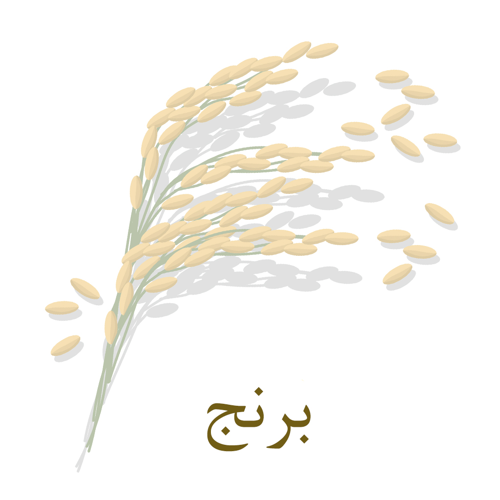 آیکون برنج