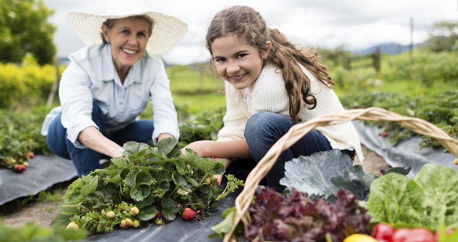 دختر کشاورز