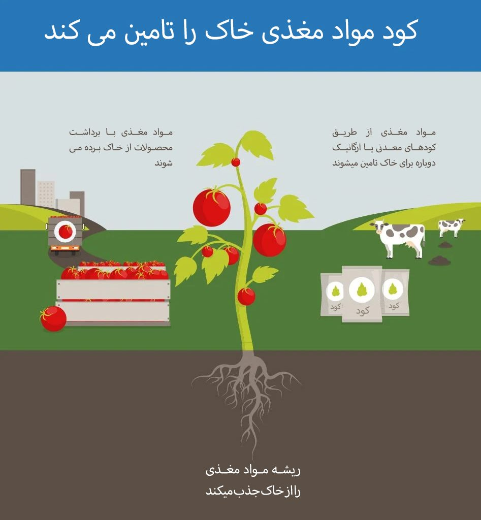 کود معدنی ارگانیک کشاورزی